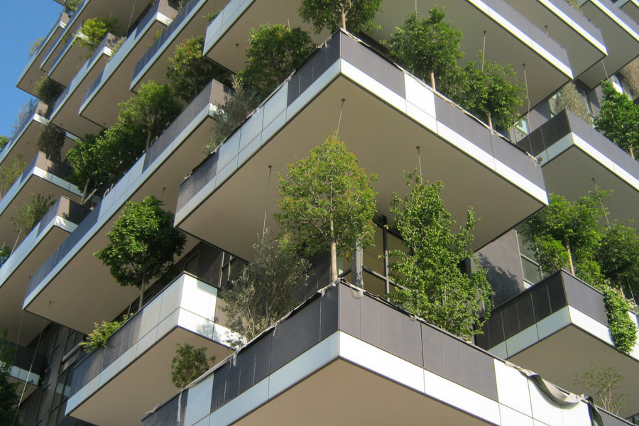 urban tree planting and vertical garden